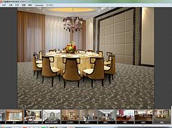 地毯贴图效果展示软件四维星正版3d客厅地毯制作室内设计软件开发