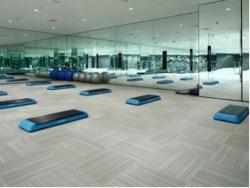 地毯-ECO-11025BS