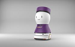 花生引领机器人