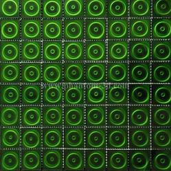 绿之宇 梵登 翠绿同心圆